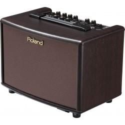 Roland AC33 Roswood RW