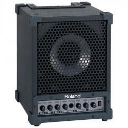 Roland Cube monitor CM30