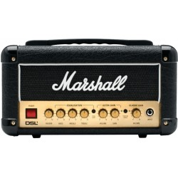 Marshall DSL 1 head