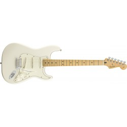Fender player strat mn pwt