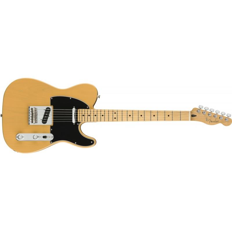 Fender player telecaster mexique mn btb